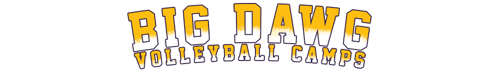 Big Dawg Volleyball Camps